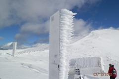 caccia-neve